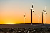 Renewable Energy Selects