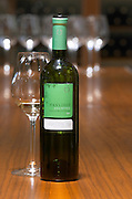 Assyrtiko. Ktima Pavlidis Winery, Drama, Macedonia, Greece