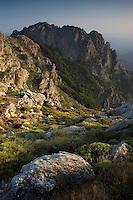 Mouflon habitat/Landscape/Parc naturel regional du Haut-Languedoc/Caroux/France