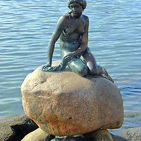 Europe, Denmark, Copenhagen. The Little Mermaid Statue in Copenhagen.