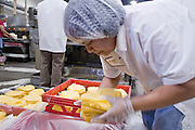 05 MAY 2008 -- PHOENIX, AZ: MARIA GONZALEZ packs corn tortillas at the end of the production line at La Canasta in Phoenix. La Canasta uses 20,000 - 25,000 pounds of corn daily to make almost two million tortillas. Josie Ippolito, President of La Canasta, said the price of the corn she buys has shot up more than 50 percent since November, 2007 and is expected to double by the end of this year. This in addition to the 200 percent increase in the price of wheat flour she uses in other products at La Canasta.   Photo by Jack Kurtz