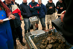 UK ENGLAND WEST MERSEA 13SEP09 - Oysters are brought to shore during the annual Oyster dredge match off the coast of West Mersea, Essex, England.....jre/Photo by Jiri Rezac / WWF UK....© Jiri Rezac 2009