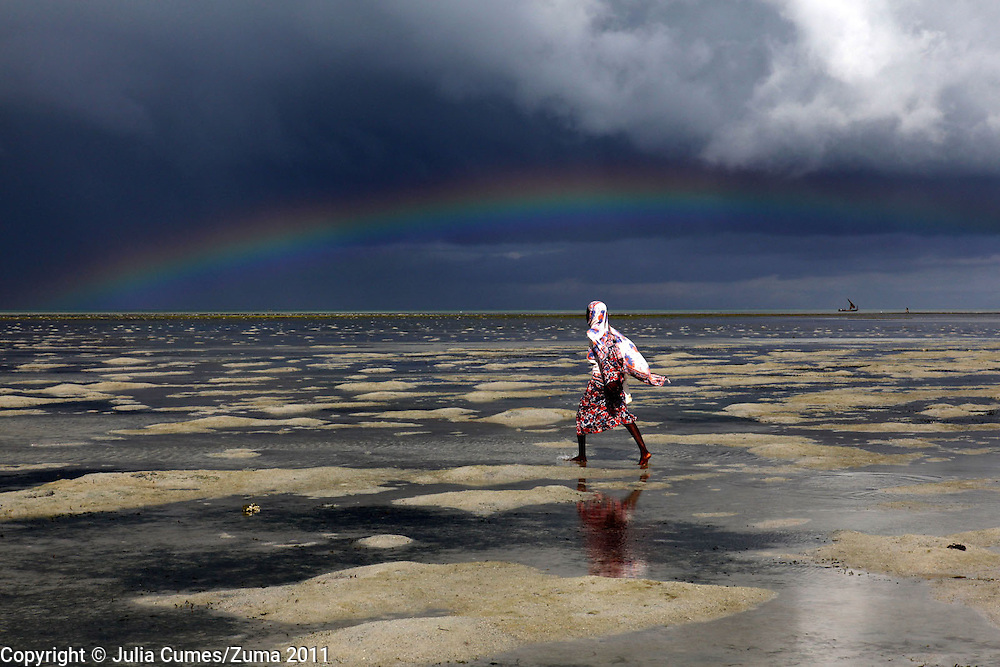 With a storm brewing on the horizon, Ikiwa Abdulla heads out at lowtide to gather shellfish in Fumba, Zanzibar.  Abdulla is a participant in a shellfish program that hopes to teach women in Zanzibar how to cultivate shellfish. While women already harvest shellfish, the program will help replenish the already overfished stocks of oysters and clams and promote economic opportunities for women in rural villages in Zanzibar.