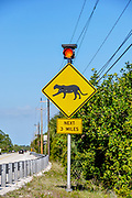 Vertical photo of RADS panther crossing sign, a wildlife safety corridor, on US highway 41 in Florida, which runs through Big Cypress National Preserve.