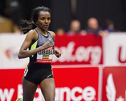 New Balance Indoor Grand Prix track meet: Tirunesh Dibaba, Ethiopia, wins women's two mile