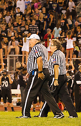 26 September 2014: Danville Vikings v Normal Community West Wildcats Football in Normal Illinois