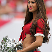A cheerleader is seen during an NFL football game between the San Francisco 49ers  and the Tampa Bay Buccaneers on Sunday, December 15, 2013 at Raymond James Stadium in Tampa, Florida.. (Photo/Alex Menendez)