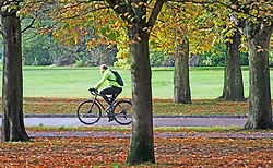©Licensed to London News Pictures 14/10/2020  <br /> Greenwich, UK. Autumn sunshine makes a brief appearance today in Greenwich park, Greenwich, London. Photo credit:Grant Falvey/LNP