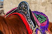 Kazakh eagle hunter's decorated saddle, Altai Mountains, Bayan Ulgii, Mongolia