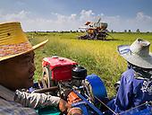Politics Threaten Thailand's Rice Export Title