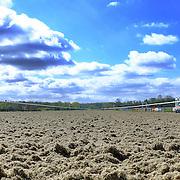 Lingfield 18th April 2014