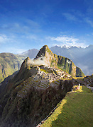 View of Machau Picchu with llama in foreground, Cusco Region, Peru, South America