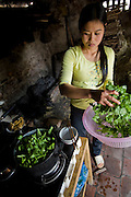 The daughter-in-law of rice farmer Nguyen Van Theo cooks lunch at their shared homestead in Tho Quang village, Vietnam. (From the book What I Eat: Around the World in 80 Diets.)  Nguyen Van Theo and his family still eat traditional Vietnamese foods.