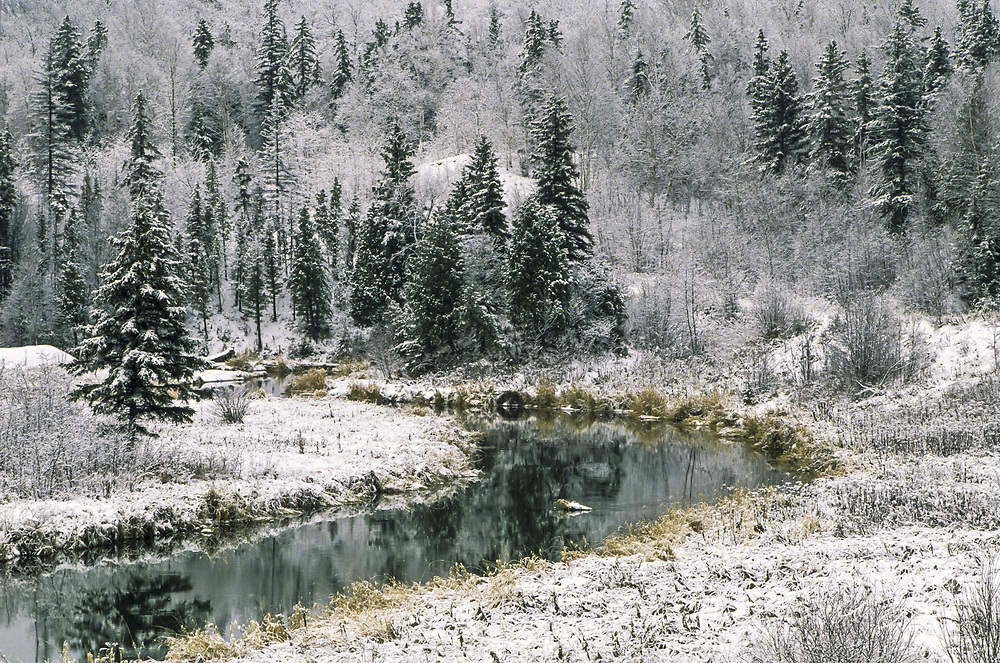 Junction Creek in winter, Lively, Ontario, Canada