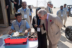 The Prince of Wales looks at oysters on a visit to Bu Tinah Island, a UNESCO protected marine area in the United Arab Emirates, during the royal tour of the Middle East.