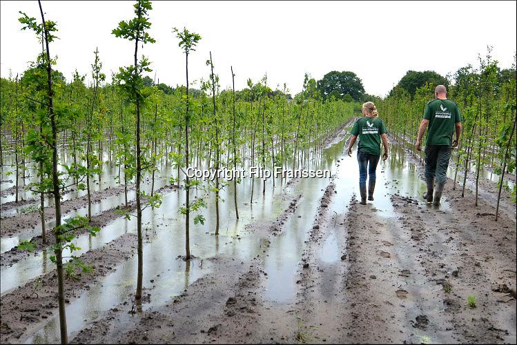 Nederland, the Netherlands, Wanroy, 16-6-2016Waterplassen en verdronken land bij een boomkwekerij in de omgeving van Boxmeer door de zeer plaatselijke, lokale, hoosbuien van de afgelopen weken. Een grote schadepost voor de akkerbouwersFoto: Flip Franssen