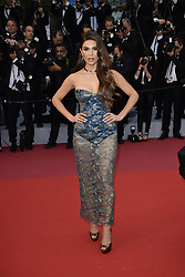 Negin Nirsalehi attending the Pain and Glory Premiere as part of the Cannes 72nd Film Festival in France