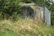 halve overgrown old chicken run