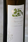 Bottle of Gangas Bijeli Barrique oak aged white wine, Zilavka, berba 2003 vintage. Label detail. Vita@I Vitaai Vitai Gangas Winery, Citluk, near Mostar. Federation Bosne i Hercegovine. Bosnia Herzegovina, Europe.