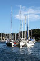 Sailboats at Miura Peninsula Japan