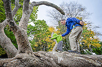 Dad helps son balance on fallen tree in autumn, Vancouver, Canada.