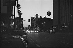 Sunset Boulevard Hollywood at Sunset.