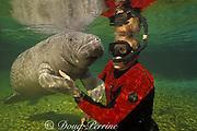 photographer and Florida manatee, Trichechus manatus latirostris, Three Sisters Spring, Crystal River National Wildlife Refuge, Crystal River, Florida , MR 262
