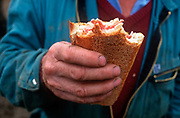 Detail of a farmers tough hand holding a crusty ham sandwich during a lunchbreak on the mans land near the Alsace village of Boofzheim, on 13th October 1997, in Boofzheim, France. The farm is in the french village of Boofzheim, a commune in the Bas-Rhin department in Alsace in north-eastern France. Its name is probably derived from the French boeuf bull or ox.