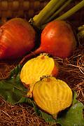 Golden Turnips in box