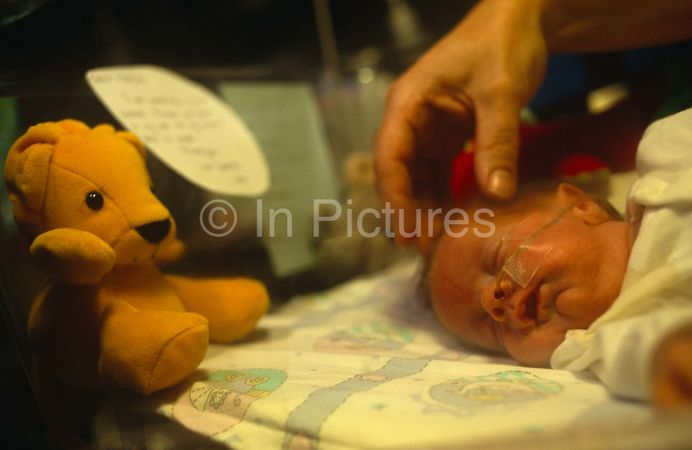 With a large hand from her worried mother gently caressing her head, a tiny premature new-born born baby sleeps on its side with an oxygen tube in its nose, while gathering strength in her incubator at the Royal London Hospital, Whitechapel, London, England. In her warm cot, a toy bear looks on in the corner and a poem writen on a card from the baby's parents has been attached to the plastic wall. It is a tender moment of hope, that this precious young human life can continue to grow into adulthood and be loved by all. The Royal London Hospital is one of London's oldest, having been founded in 1740 and is a major teaching hospital in Whitechapel, East London.
