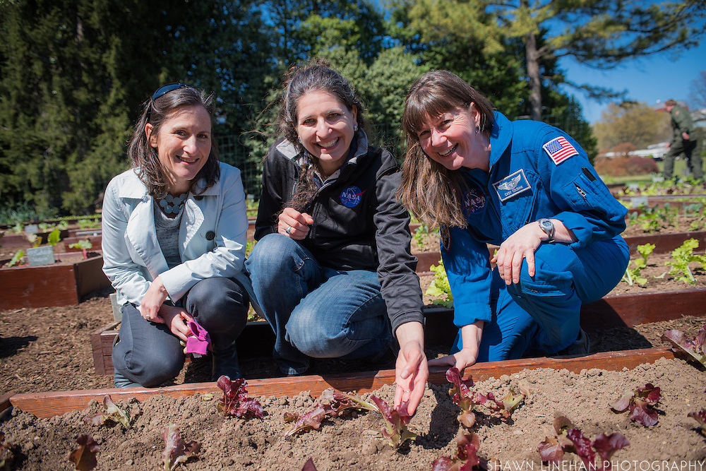 """Debra Kane, head of the USDA's Farm to School Program and the Nasa Team pose with """"Outredgeous"""" lettuce the first lettuce grown in space and bred by Frank Morton of Wild Garden Seed in Philometh, Oregon."""