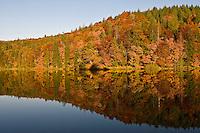 Water reflection on Proscansko lake surface, Upper lakes, Plitvice national Park, Croatia