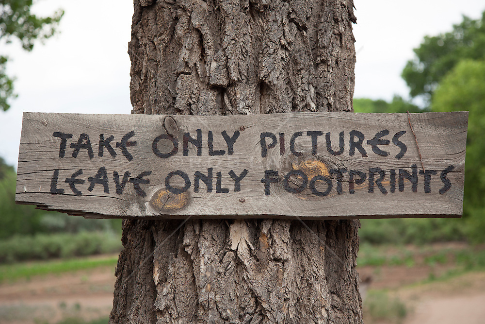primitive style sign posted to a tree in New Mexico