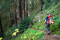 Dog and backpacker hike Pine Ridge Trail, Big Sur, California.
