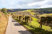 Narrow road leading into Exmoor national park landscape, near Malmsmead, Devon, England