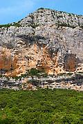 Domaine de l'Hortus. The Montagne Massif de l'Hortus mountain cliff. Pic St Loup. Languedoc. France. Europe.