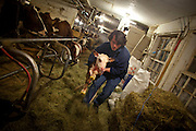 Jasper Hill Farms, owned by brothers Andy and Mateo Kehler. .Photo Justin Ide/www.f2percent.com