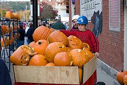 Moving Jack o Lanterns to display, Keene Pumpkin Festival
