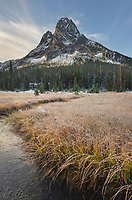 Liberty Bell Mountain and meadows of Washington Pass. North Cascades, Washington
