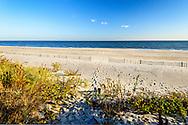Beach,  Gin Lane, Southampton, NY, Long Island.