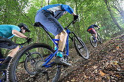 Mountainbikers riding uphill through forest track, Bavaria, Germany