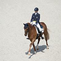Dressage - Eventing - DHL Preis - CHIO Aachen 2014