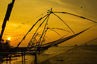 Kochi Fishing Nets Sunset - The Chinese fishing nets at  Kochi are used for a unique method of fishing. Operated from shore the nets are extended on bamboo poles and held up by huge mechanical strctures which are lowered and raised from the sea. They are counter-weighed by large stones.  Each net is operated by a team of five or six fishermen.  The net is left in the water for only a a few minutes before it is raised back up by ropes.