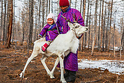 A young Tsaatan couple with their young daughter on a reindeer, Khovsgol Province, Mongolia