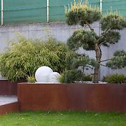 Modern Garden 818