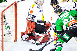 14.11.2014, Hala Tivoli, Ljubljana, SLO, EBEL, HDD Telemach Olimpija Ljubljana vs Dornbirner Eishockey Club, 18. Runde, in picture Andrej Hebar (HDD Telemach Olimpija, #84) vs Nathan Lawson (Dornbirner Eishockey Club, #52) during the Erste Bank Icehockey League 18. Round between HDD Telemach Olimpija Ljubljana and Dornbirner Eishockey Club at the Hala Tivoli, Ljubljana, Slovenia on 2014/11/14. Photo by Matic Klansek Velej / Sportida