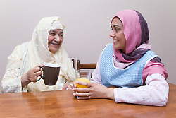 Young female carer and older woman having a drink together,