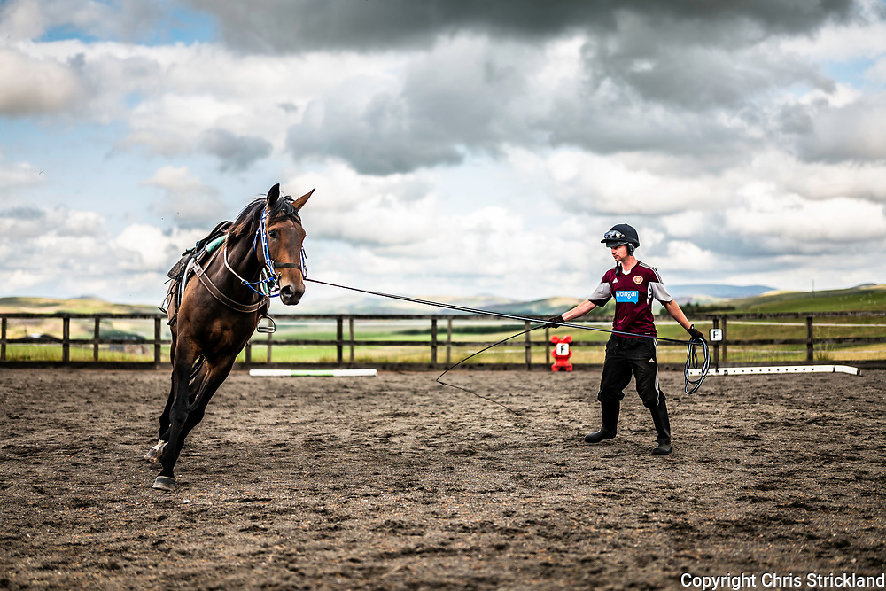 Brundeanlaws, Camptown, Jedburgh, Scottish Borders, UK. 15th August 2018. Racehorse trainer Gary Rutherford breaks in four year old Eric at his yard near Jedburgh in the Scottish Borders. National Hunt racing in Scotland generates in excess of £300 million in revenue.