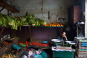 A man makes a telephone call in a vegetable shop, Bein al-Qasreen area, Islamic Cairo, Cairo, Egypt