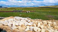 Mongolie, province de Bayan-Ulgii, Parc national de Tavan Bogd, les plus hauts sommets de la chaine de montagne Altai, campement nomade des Kazakh, fromage sechant dehors // Mongolia, Bayan-Ulgii province, western Mongolia, National parc of Tavan Bogd, the 5 highest summit of the Altay mountains, nomad camp of Kazakh people, cheese